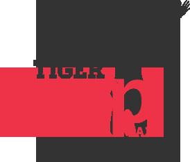 trampoline park monteux tiger jump sur topflex.fr